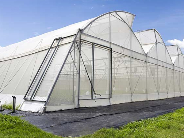 Bird-proof and insect-proof net series